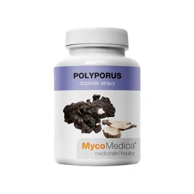 Polyporus gombák