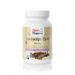 Cordyceps 500 mg, 120 kapszula